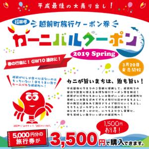 福井県越前町の旅行クーポン券「カーニバルクーポン」